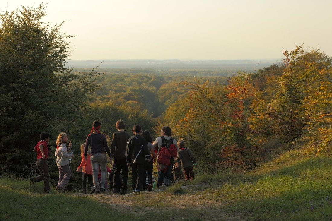 scouts se promenant en pleine forêt